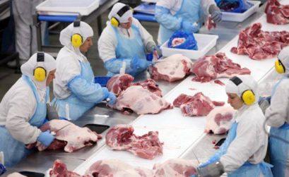 Ricupero, da FAAP: Solução para carne é outra